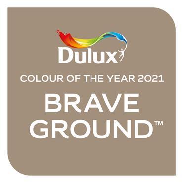 Dulux Easycare Tester Brave Ground