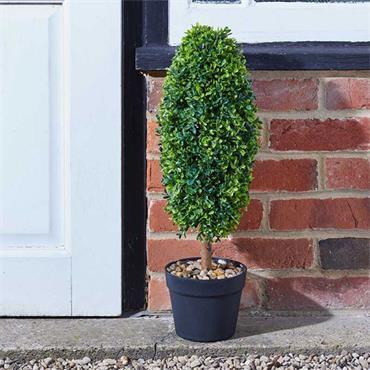 Smart Garden Uovo Topiary Tree