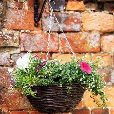 """Smart Garden 14"""" Rattan Hanging Basket"""