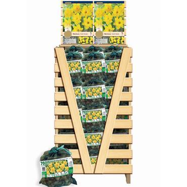 Kapiteyn Netlon Bag Narcissus Yellow Bulbs Spring Flowering 70pk