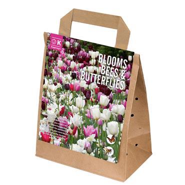 Kapiteyn Blooms Bees & Butterflies Pink Shades Bulbs Spring Flowering 25pk
