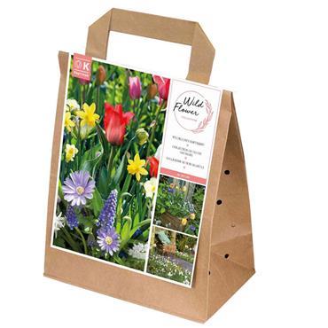 Kapiteyn Bag Spring Wild Flower Bulbs Spring Flowering 40pk