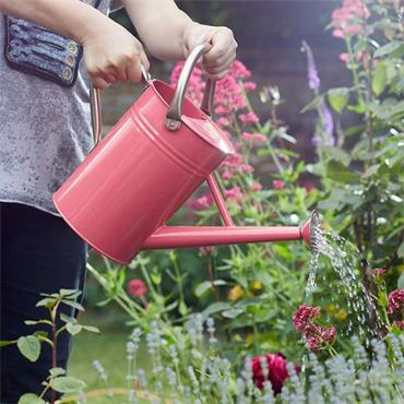 Smart Garden Watering Can Coral Pink 4.5L