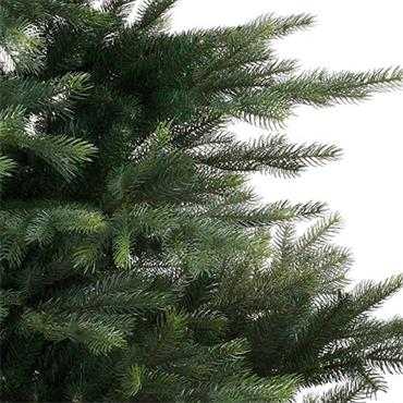 8FT Grandis Fir Christmas Tree