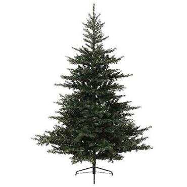 10FT Grandis Fir Christmas Tree