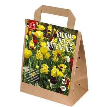Kapiteyn Blooms Bees & Butterflies Yellow/Maroon Spring Flowering 25pk