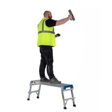 Werner Pro Work Platform Ladder