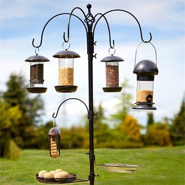 Tom Chambers Select Bird Station