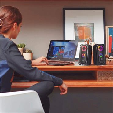 HP 6001 Desktop Multimedia Speakers