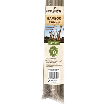 Bamboo Canes 1.5m 10pk