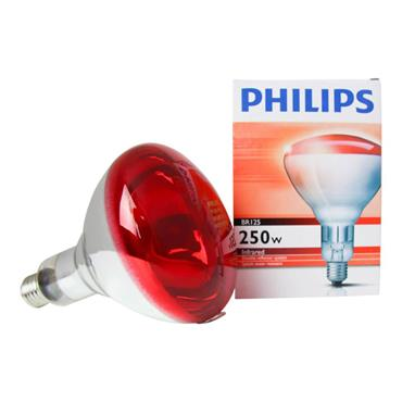 Philips 250w Infrared Bulb