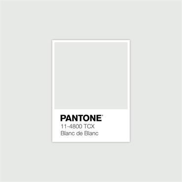Pantone Sample Pot Blanc De Blanc