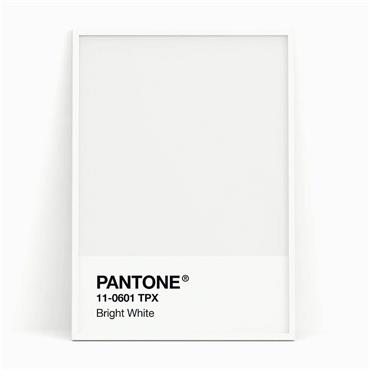 Pantone Sample Pot Bright White