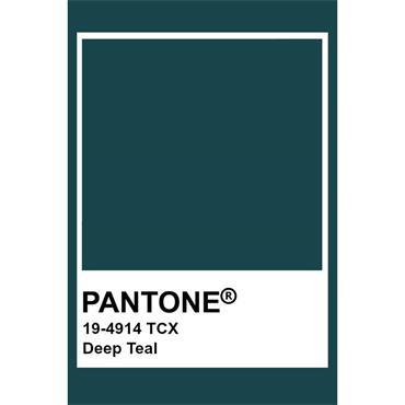 Pantone Sample Pot Deep Teal