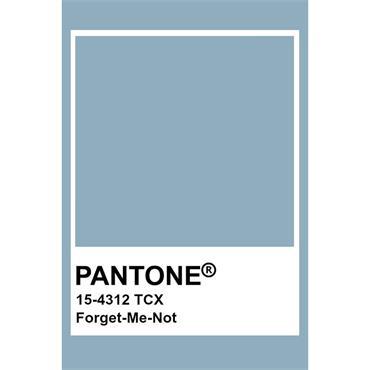 Pantone Sample Pot Forget Me Not
