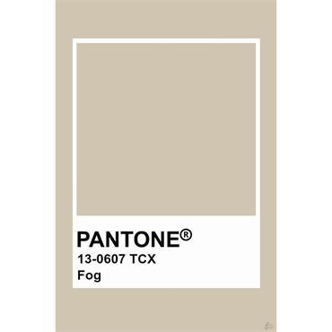 Pantone Sample Pot Fog