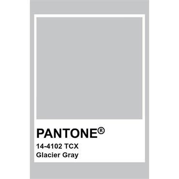 Pantone Sample Pot Glacier Gray