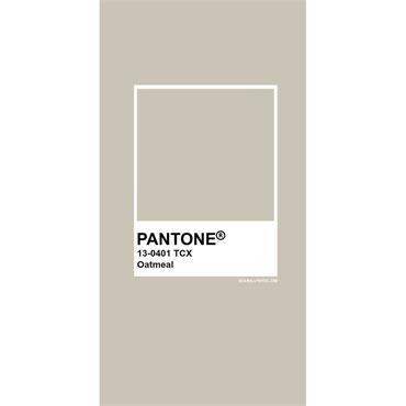 Pantone Sample Pot Gray Morn