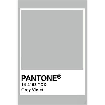 Pantone Sample Pot Gray Violet