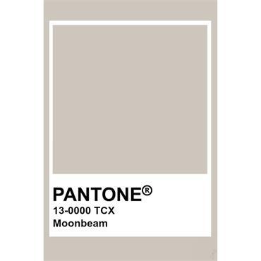Pantone Sample Pot Moonbeam