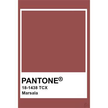 Pantone Sample Pot Marsala