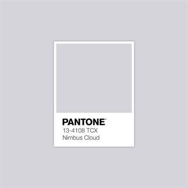 Pantone Sample Pot Nimbus Cloud
