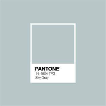 Pantone Sample Pot Sky Gray