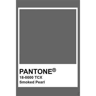 Pantone Sample Pot Smoked Pearl