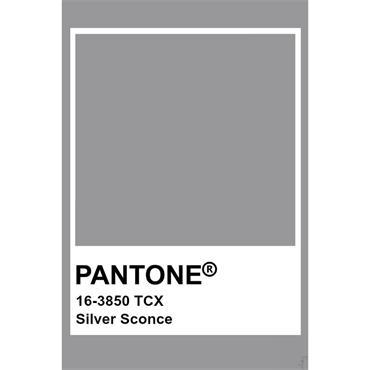 Pantone Sample Pot Silver Sconce