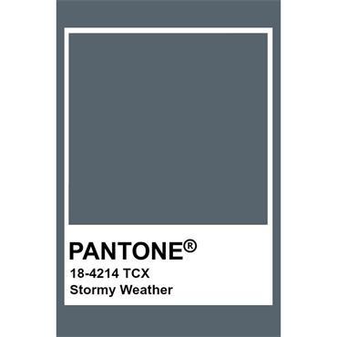 Pantone Sample Pot Stormy Weather