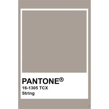 Pantone Sample Pot String