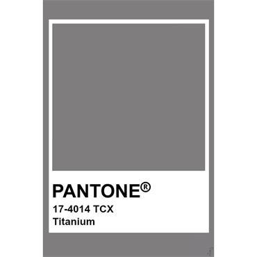 Pantone Sample Pot Titanium