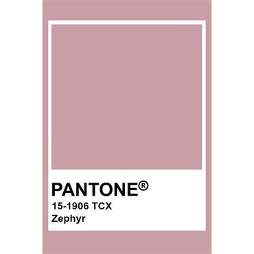 Pantone Sample Pot Zephyr