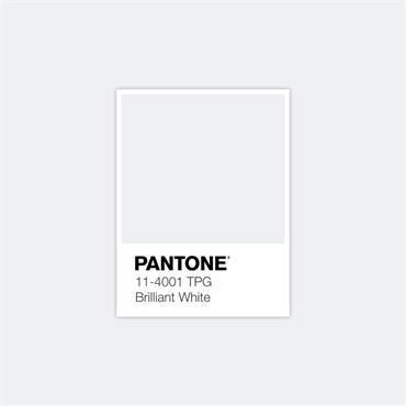 Pantone Sample Pot Brilliant White