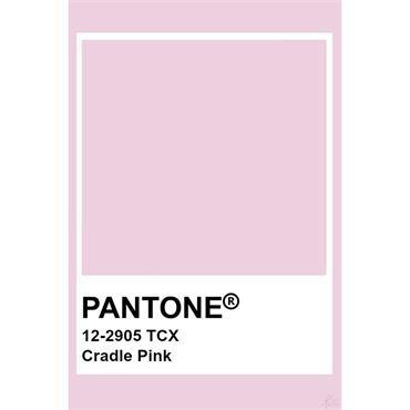 Pantone Sample Pot Cradle Pink