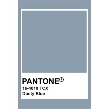 Pantone Sample Pot Dusty Blue