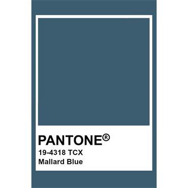 Pantone Sample Pot Mallard Blue