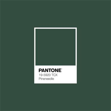 Pantone Sample Pot Pine Needle