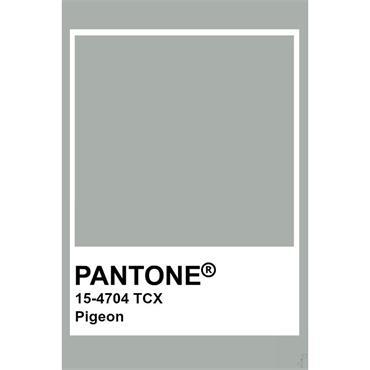 Pantone Sample Pot Pigeon