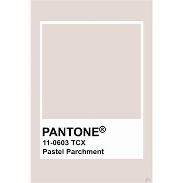 Pantone Sample Pot Pastel Parchment