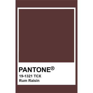 Pantone Sample Pot Rum Raisin