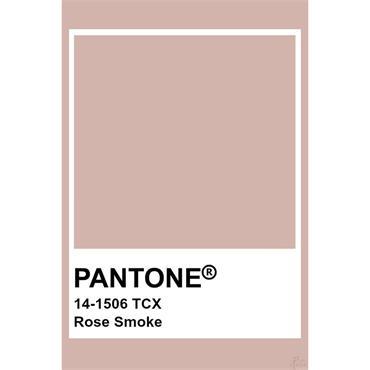 Pantone Sample Pot Rose Smoke