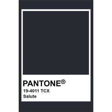 Pantone Sample Pot Salute