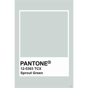 Pantone Sample Pot Sprout Green