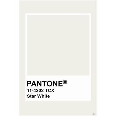 Pantone Sample Pot Star White