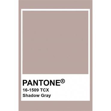 Pantone Sample Pot Shadow Grey