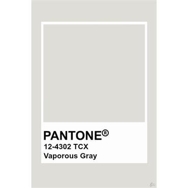 Pantone Sample Pot Vaporous Gray