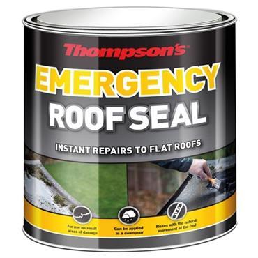 Thompsons Emergency Roof Seal 2.5L