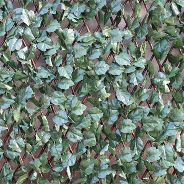 Wonder Wall Ivy Trellis 100 x 200cm