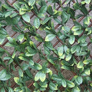 Wonder Wall Laurel Leaf Trellis 100 x 200cm